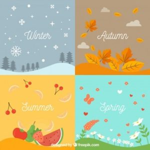 Seasonal Delights