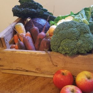 Organic Fruit and Veg Boxes